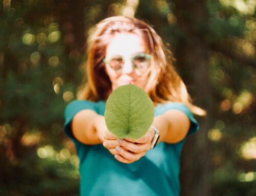 Sustainability at the Forefront: Leading the Sustainability Charge Within the HR Industry